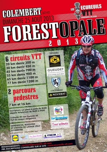 flyer_forest2013[1].jpg